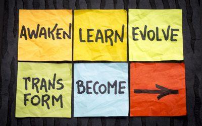 Erwecken, lernen, weiterentwickeln, transformieren – WERDEN